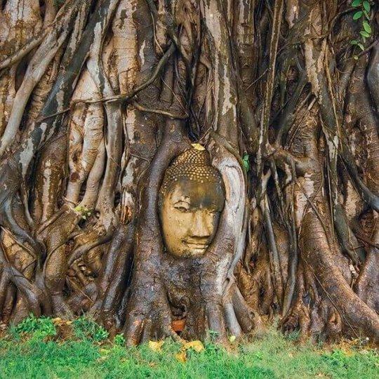 Wat-Mahathat-e1538724867943